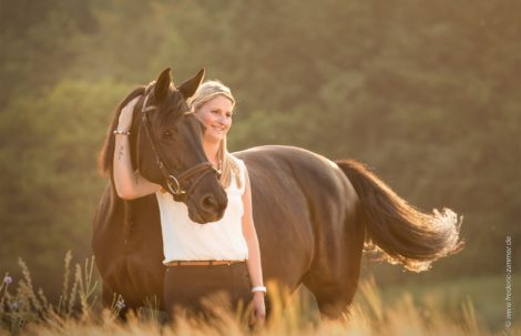 Pferdefotografie Saarland Portfolio