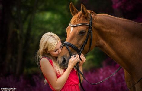 Pferdefotografie Saarland